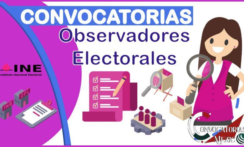 convocatoria-observadores-electorales