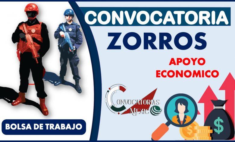 Convocatoria Zorros 2021-2022