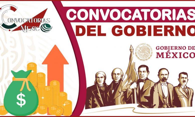 Convocatorias del Gobierno 2021-2022