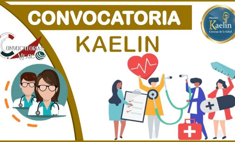 convocatorias-kaelin
