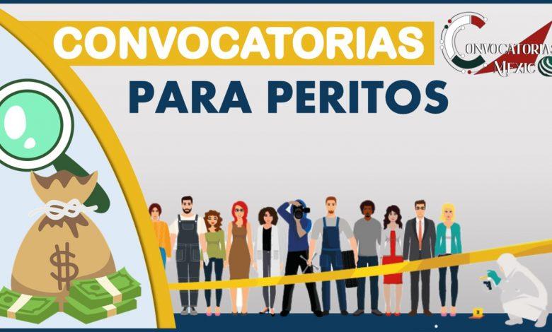 Convocatorias para Peritos 2021-2022