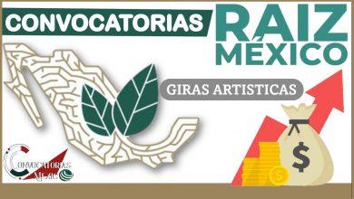 Convocatorias Raíz México 2021-2022