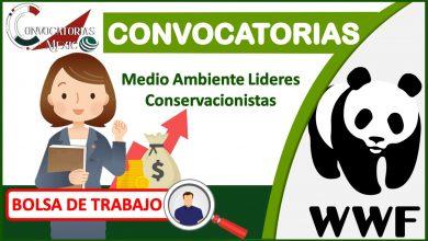 Convocatorias WWF2021-2022