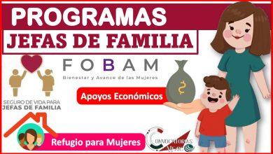 Programas jefas de familia 2021-2022