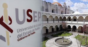 Instituto de Universidad